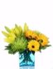 Celebration Flowers in Calgary Canada